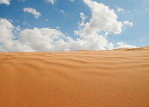 australian desert 1