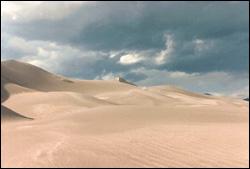 desert foundation