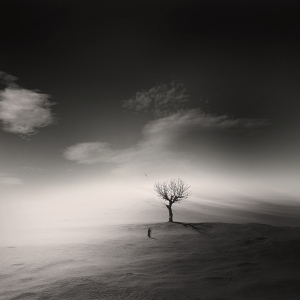 solitude-3