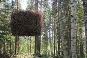 amazing-treehouses-11