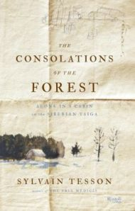 consolations forest