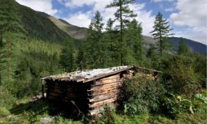 A hut in the Siberian taiga