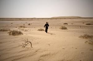 egyptian desert 4