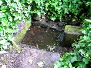 baldreds well