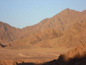 desert lent