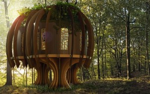 quiet-treehouse_2879862b