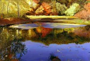 Walden_Pond_Concord_Massachusetts_2