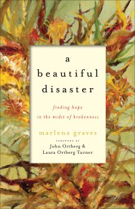 beautiful disaster big