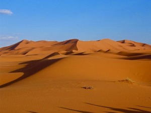 desert 2