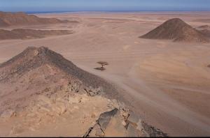 eastern desert 2