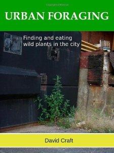 urban foraging craft