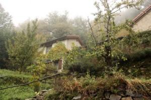 Bunge hermitage