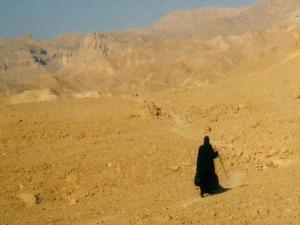Desert hermit 2