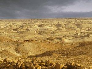 Wilderness of Judea