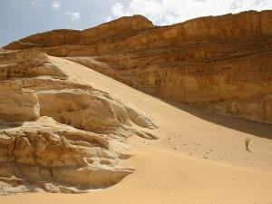 desert_trail