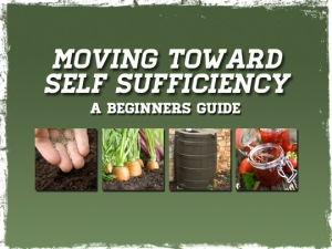 Self_Sufficiency